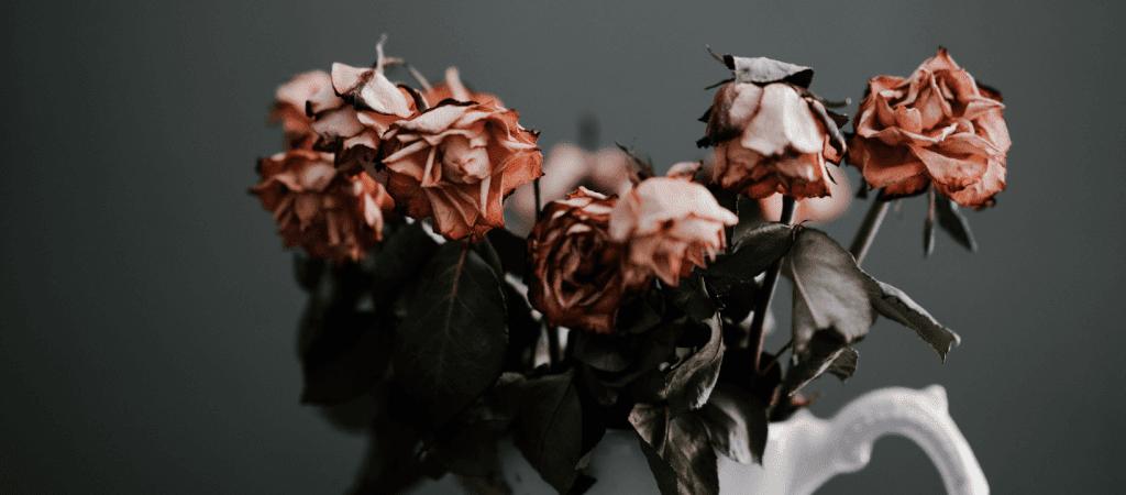 Dating Alptraum BlogImage