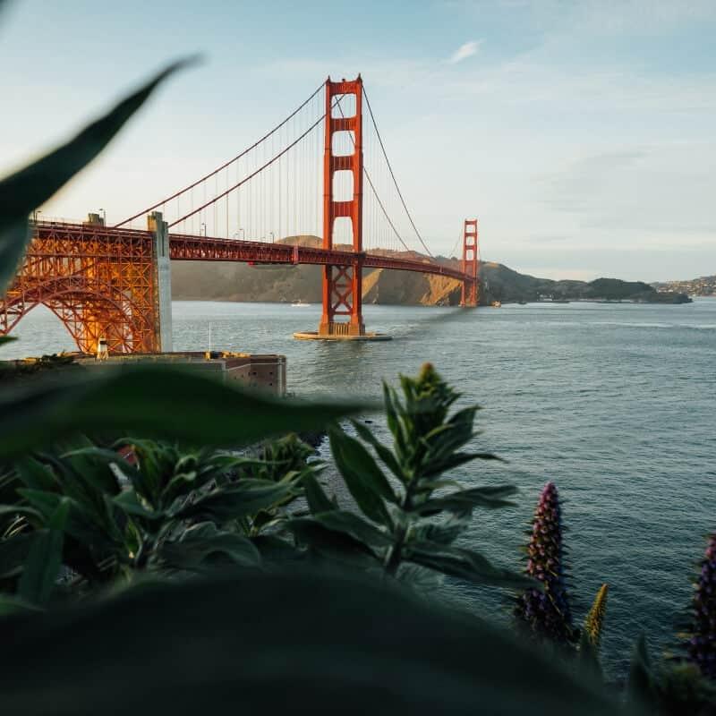 Alleine reisen als Frau? Diese 5 Urlaubsziele sind perfekt! (San Francisco)