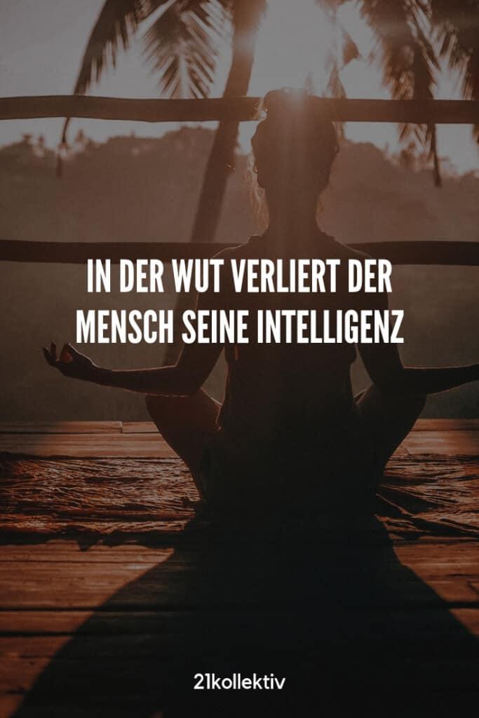 In der Wut verliert der Mensch seine Intelligenz. | Buddhistische Lebensweisheiten