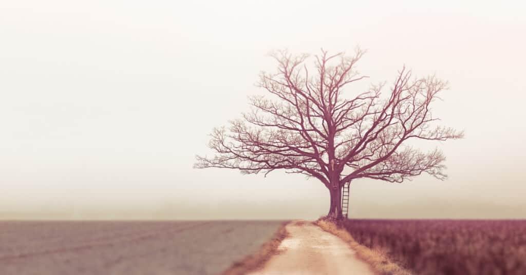 31 weise Sprüche, die dich zum Nachdenken bringen werden