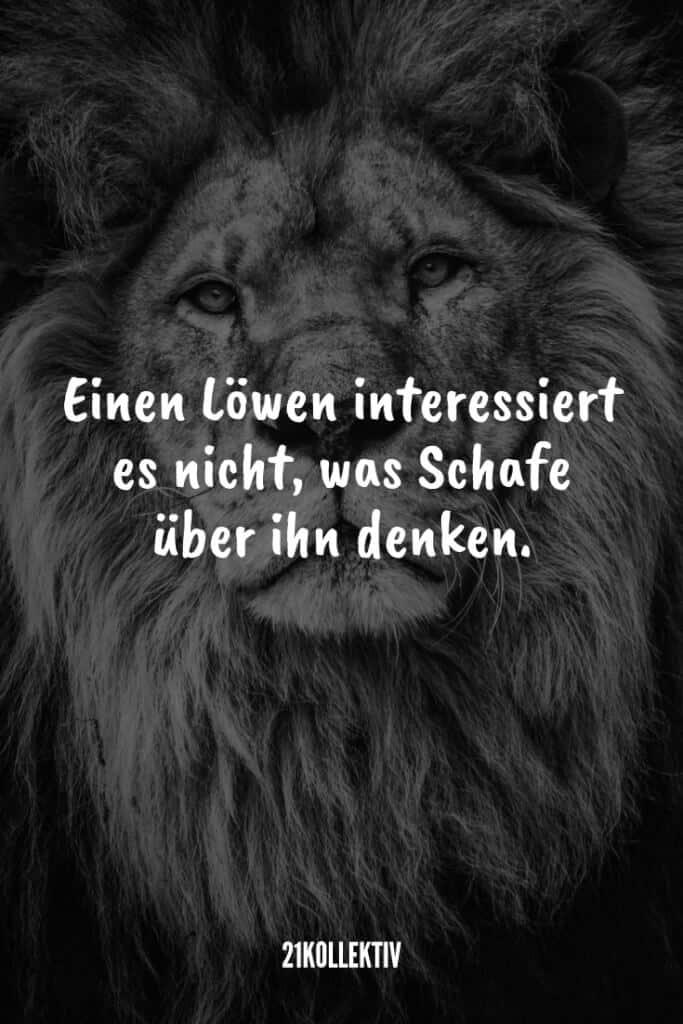 Einen Löwen interessiert es nicht, was Schafe über ihn denken. | 21kollektiv