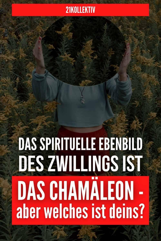 Das spirituelle Ebenbild des Zwillings ist das Chamäleon - aber welches ist deins?